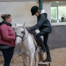 Paardrijden-01163