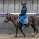 Paardrijden-01176