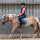 Paardrijden-01179