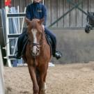 Paardrijden-01193