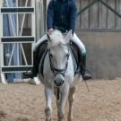 Paardrijden-01202