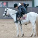 Paardrijden-01214