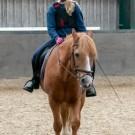 Paardrijden-01216