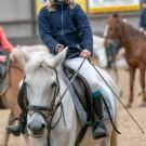 Paardrijden-01222