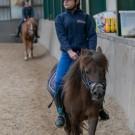 Paardrijden-01238