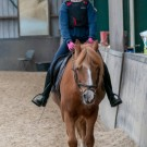 Paardrijden-01242