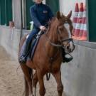 Paardrijden-01272