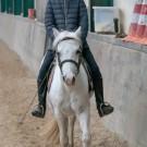 Paardrijden-01304