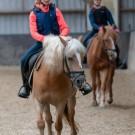 Paardrijden-01325