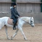 Paardrijden-01354