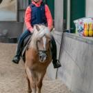 Paardrijden-01372