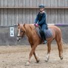 Paardrijden-01399
