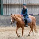 Paardrijden-01400
