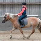 Paardrijden-01403
