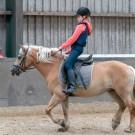 Paardrijden-01404
