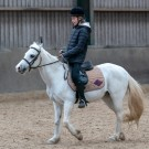 Paardrijden-01423