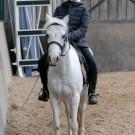 Paardrijden-01436
