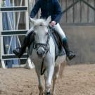 Paardrijden-01457
