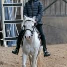 Paardrijden-01465