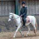 Paardrijden-01490