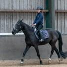 Paardrijden-01505