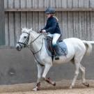 Paardrijden-01513