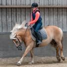 Paardrijden-01529