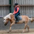 Paardrijden-01531