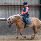 Paardrijden-01533