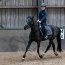 Paardrijden-01555
