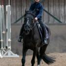Paardrijden-01558
