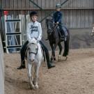 Paardrijden-01568