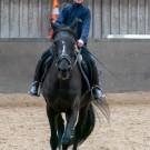 Paardrijden-01597