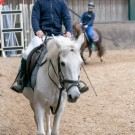 Paardrijden-01631