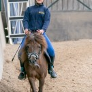 Paardrijden-01635