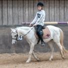 Paardrijden-01647