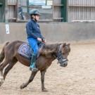 Paardrijden-01739
