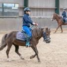 Paardrijden-01740