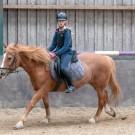Paardrijden-01764