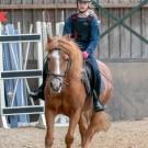 Paardrijden-01774