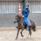 Paardrijden-01777