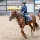 Paardrijden-01819