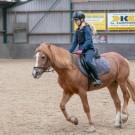 Paardrijden-01826