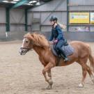 Paardrijden-01827