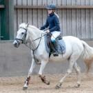 Paardrijden-01888