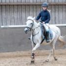 Paardrijden-01894