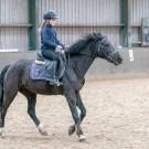 Paardrijden-01913
