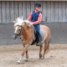 Paardrijden-01919