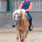 Paardrijden-01923
